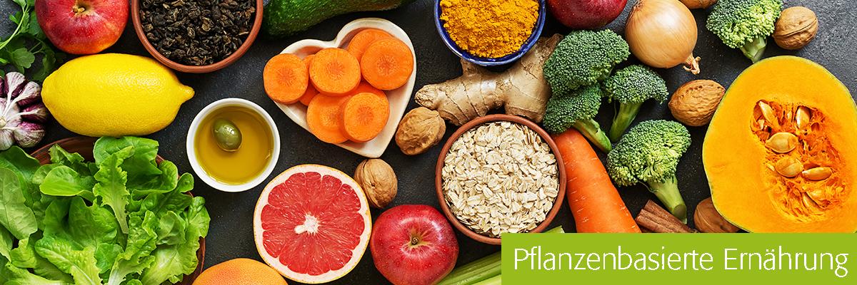 Fachgebiet Pflanzenbasierte Ernährung